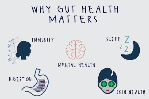 Gut health and its relation to your skin and hai